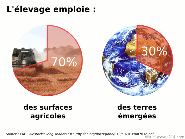 Ressources mondiales de l'élevage