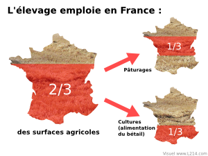 Surfaces utilis�es pour l'�levage en France